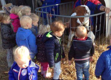 Peuteropvang Pinokkio Tjallaberd - Kids First COP groep