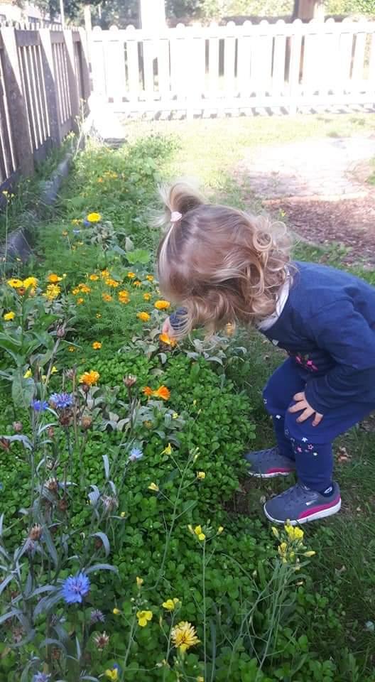 Kinderdagverblijf Maasstraat Assen tuin - Kids First COP Groep