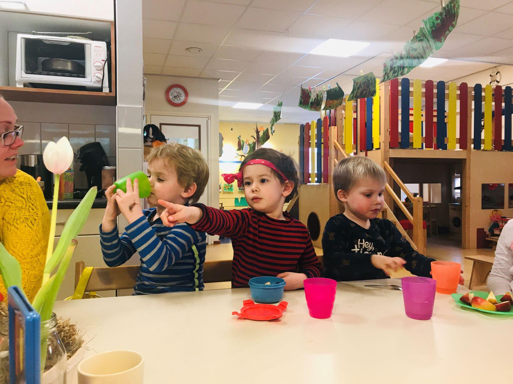 't Hummelhof Engelbert - peuteropvang Kids First COP groep